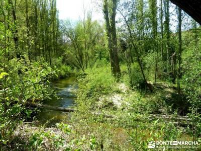 Senda de los Pescadores-Cuellar;refugio elola nacimiento rio cuervo urbasa